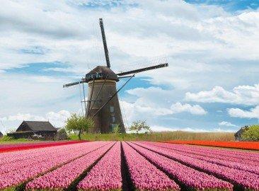 AVB Vertalingen creatief voor Holland Promotion